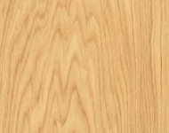 07 European Oak_sharp_web